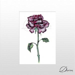 Poster rosa gótica - sem moldura - denise bruno studio